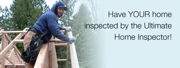 Get Your Home Inspected by the Ultimate Home Inspector